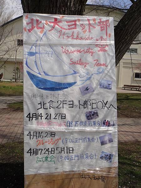 [北海道大學] 社團廣告-風帆部.JPG