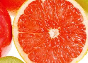 6葡萄柚.jpg