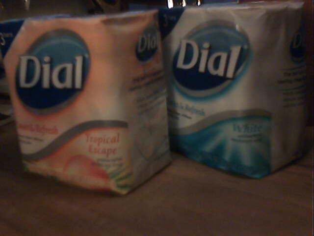 Dial皂