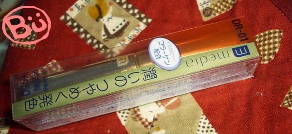 DSCI0960.JPG