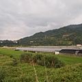 竹東軟橋0119.JPG