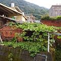 竹東軟橋0120.JPG