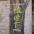 榕樹下麵店01.JPG