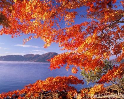 田澤湖15