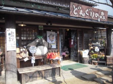 金麟湖上的商店街02.JPG