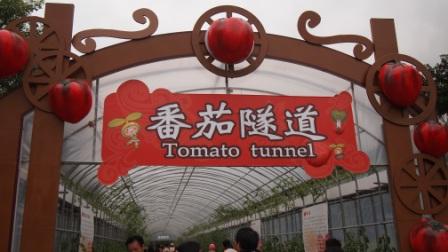 2011綠色博覽會18.JPG