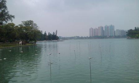 澄清湖04.jpg