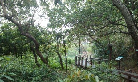 鳥松濕地公園2.jpg