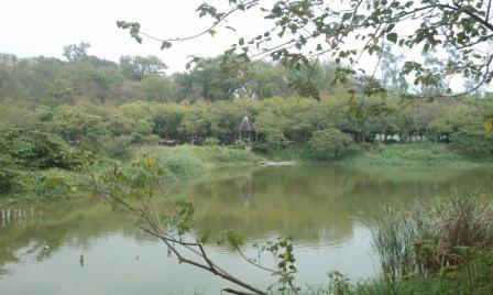 鳥松濕地公園3.jpg