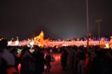 台灣燈會28.JPG