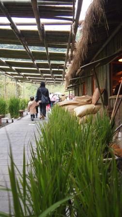 2011綠色博覽會43.JPG