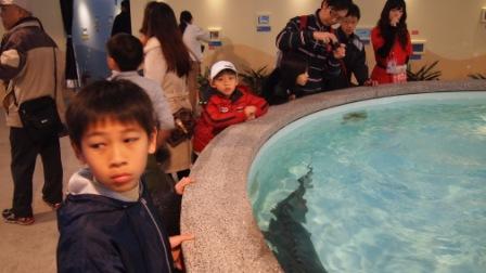 2011綠色博覽會22.JPG