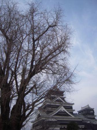 熊本城16.JPG