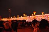 台灣燈會22.JPG