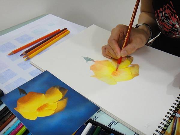 》學生色鉛花卉光影混色練習(3)