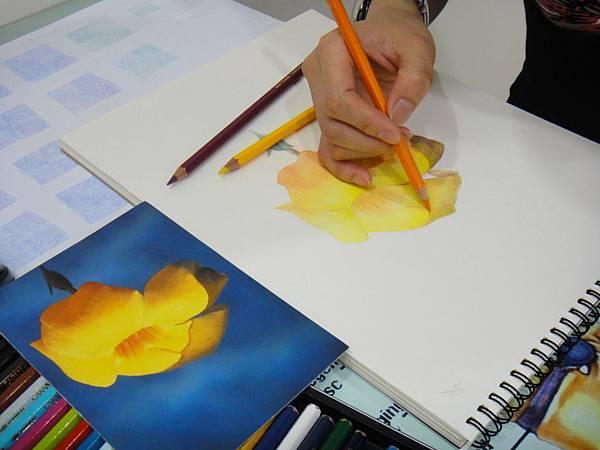》學生色鉛花卉光影混色練習(2)