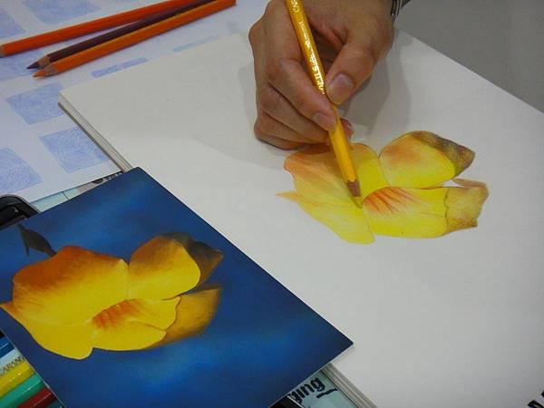 》學生色鉛花卉光影混色練習(4)