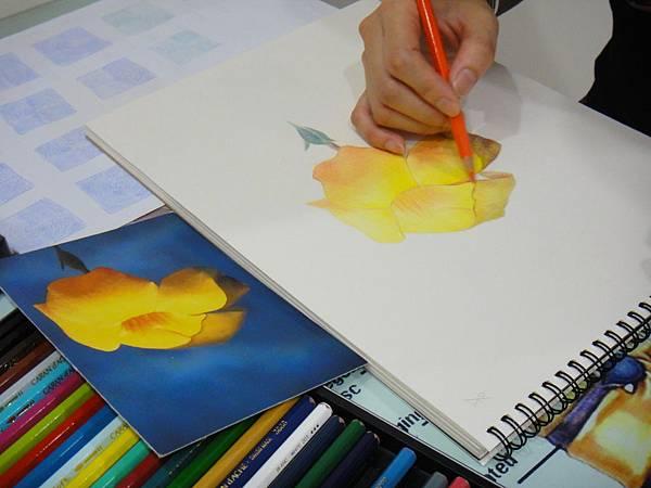 》學生色鉛花卉光影混色練習(1)