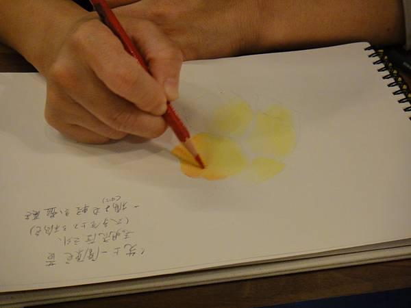 》學生色鉛花卉光影上色練習(2)