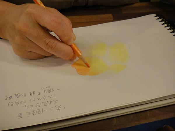 》學生色鉛花卉光影上色練習(3)