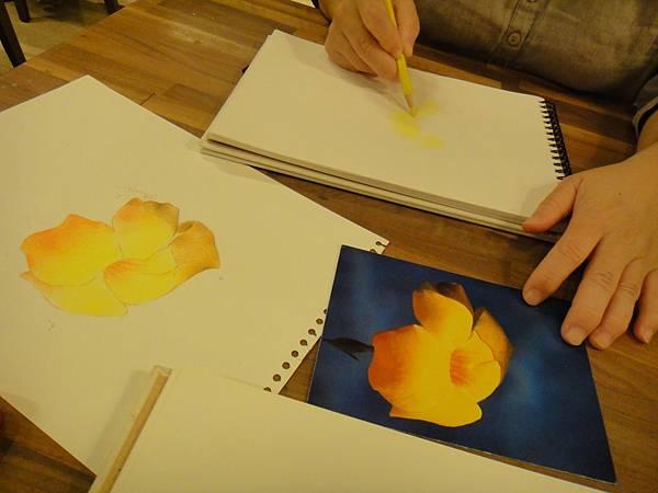 》學生色鉛花卉光影上色練習(1)