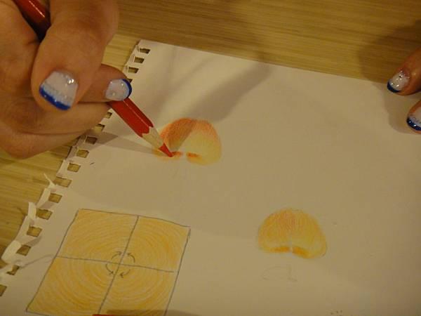》學生色鉛光影上色練習(2)