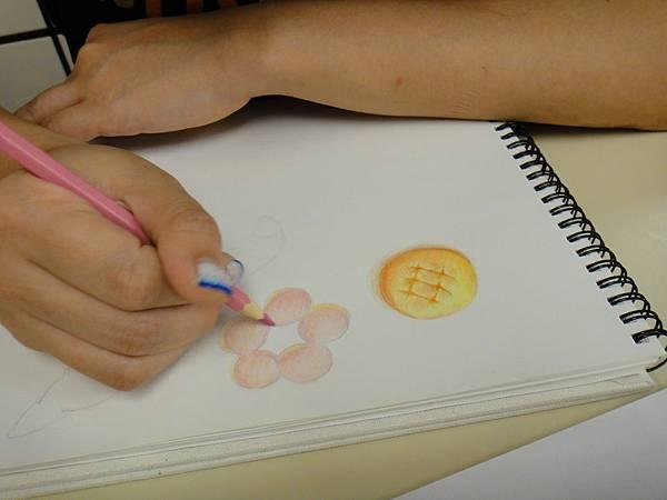 》學生色鉛光影上色練習(11)