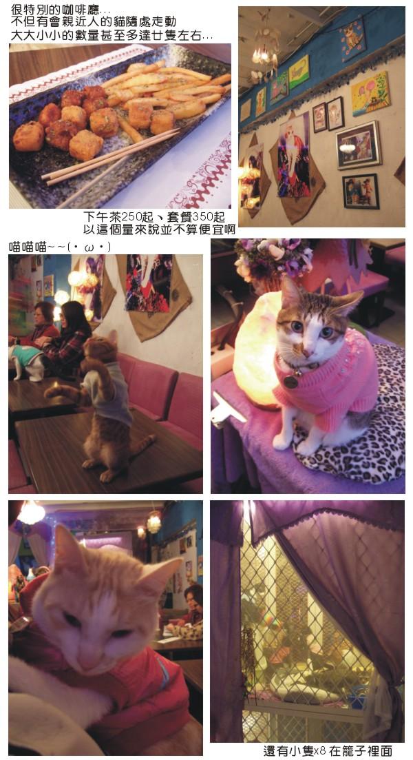 20120125貓雨咖啡廳.jpg