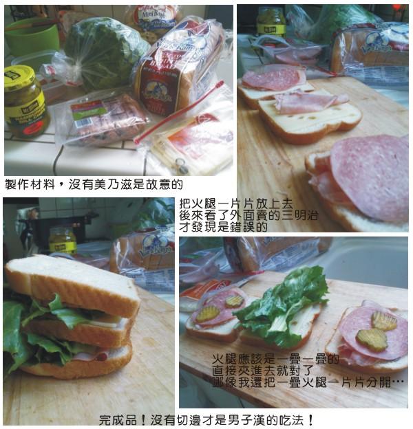 20100422美國三明治DIY