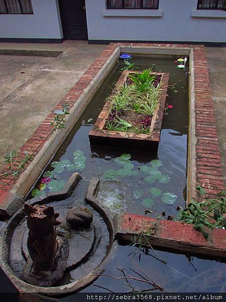 連心中庭蓮花池