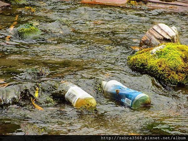 河川裡的寶特瓶