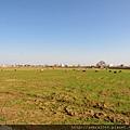 巴博爾薩爾的草原