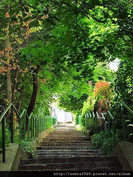 Green Path in Bratislava