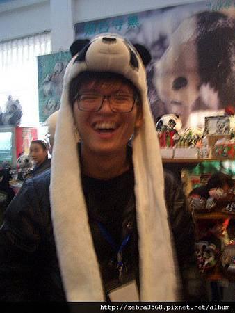 我帶熊貓帽