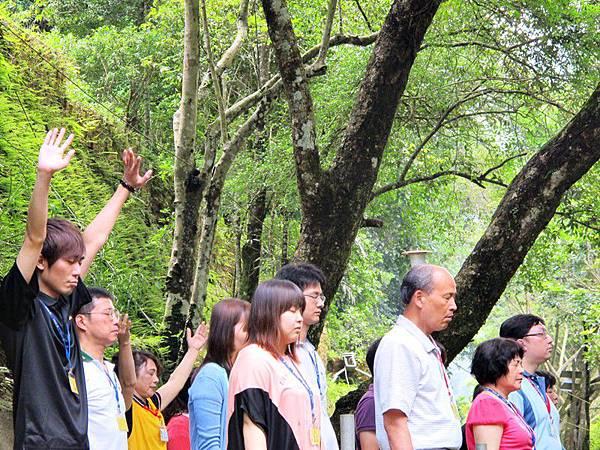 高舉雙手,接大自然的無窮能量