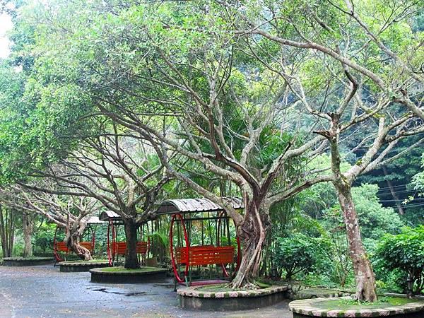 翠繞珠圍的山林野趣,讓靈修中心更添清悠之詩意