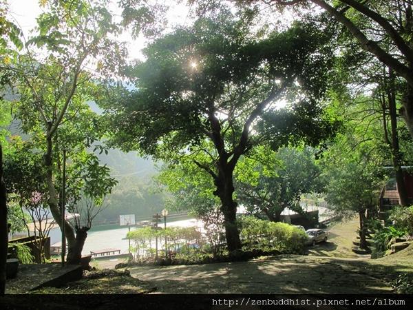 2012暑期教師生命智慧禪定營_枝葉間穿出的陽光,伴隨青草香,清晨的靈修中心份外清淨