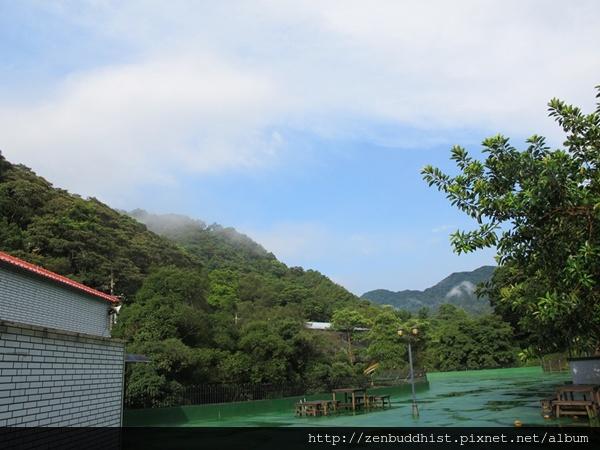2012暑期教師生命智慧禪定營_雨過天青後,一草一本都格外顯得翠綠