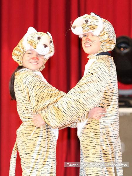 二隻可愛的小虎