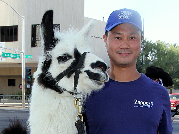 zappos-multimillionaire-ceo-explains-why-he-lives-in-a-trailer-park-with-his-two-pet-llamas.jpg