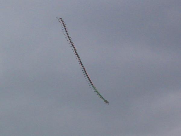 蜈蚣大風箏