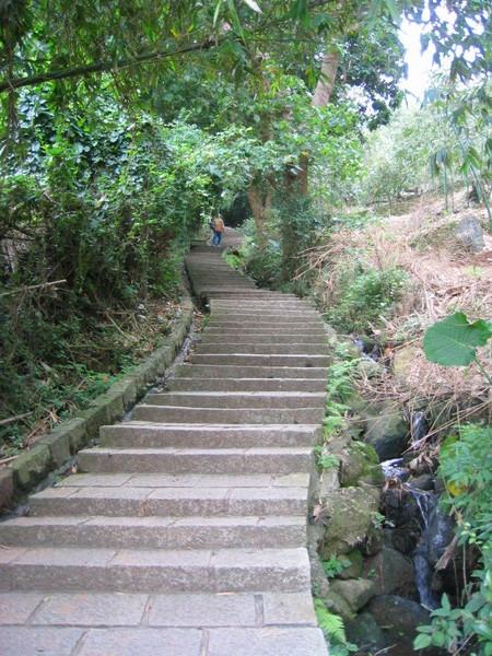 轉彎的階梯