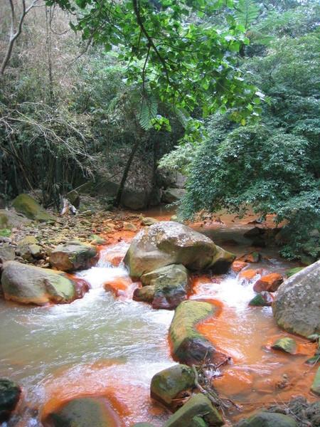 溪流風景03