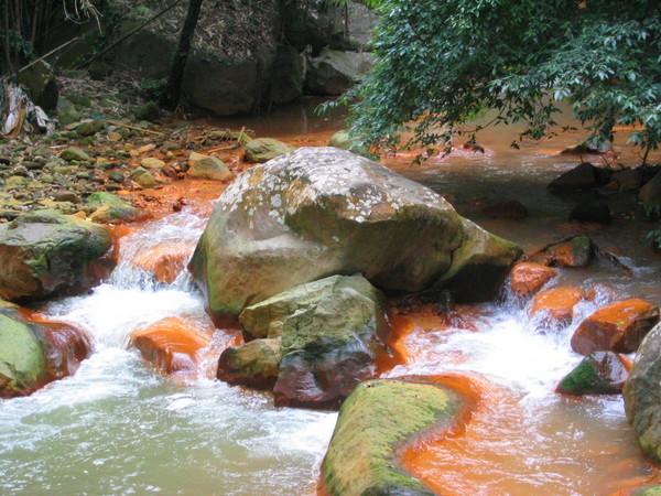 溪流風景05