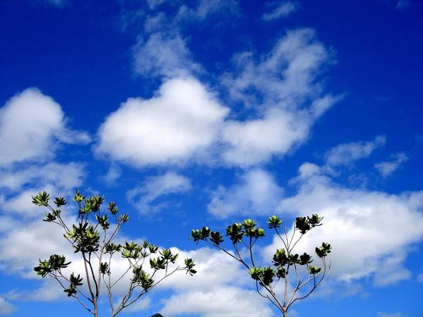 藍天白雲03.jpg