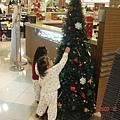 尋找聖誕樹(2.4ys)
