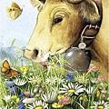 Heye_1000_29318_Cow.jpg