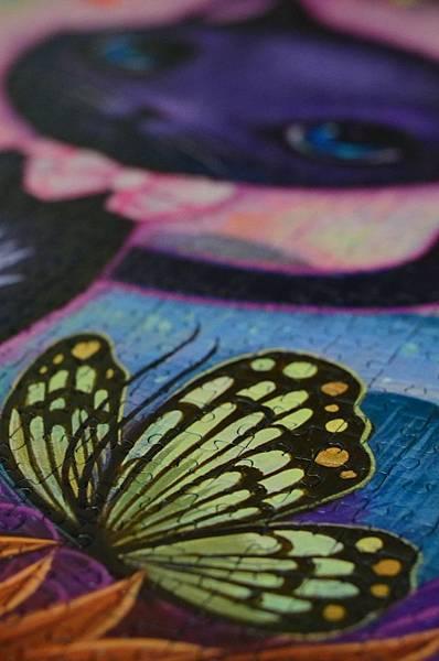 是蝴蝶在看貓?