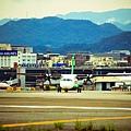 濱江街180巷拍飛機021.jpg