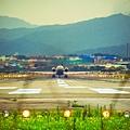 濱江街180巷拍飛機020.jpg